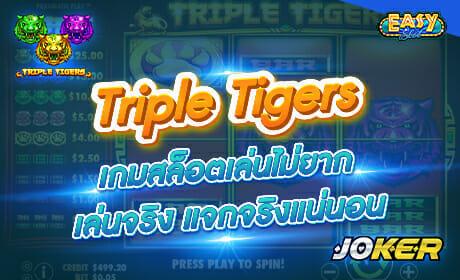 รีวิวเกม Triple Tigers ค่าย joker123