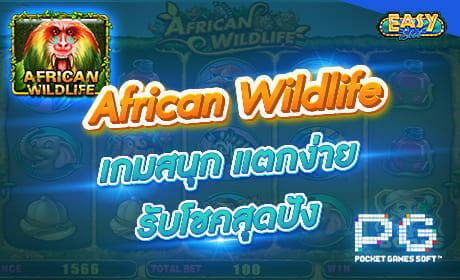 รีวิวเกม African Wildlife จากค่าย PG SLOT