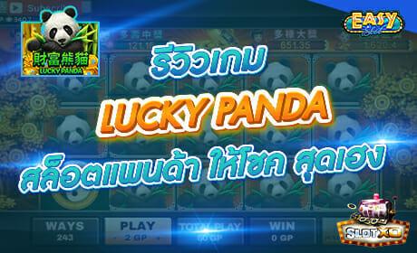 รีวิวเกม LUCKY PANDA จากค่าย slotxo
