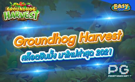 รีวิวเกม Groundhog Harvest จากค่าย PG SLOT